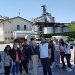 Visita didattica al Molino Rachello degli studenti del corso per panettieri CFP Trissino